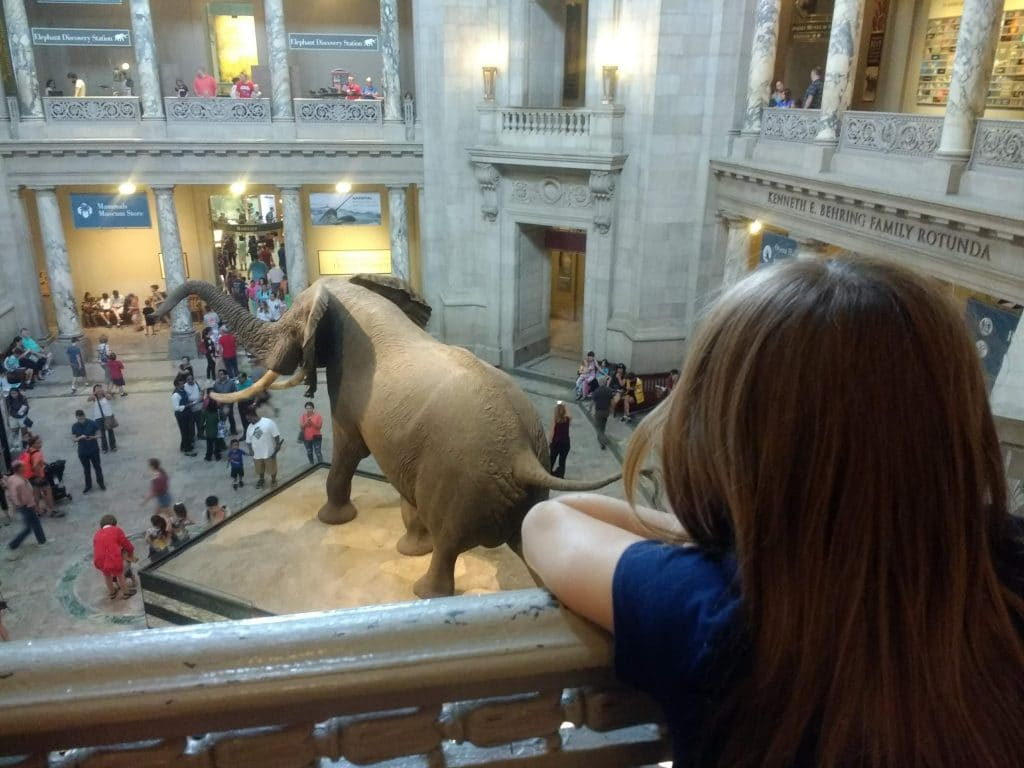 Tips for visiting the Smithsonian museums while in Washington DC