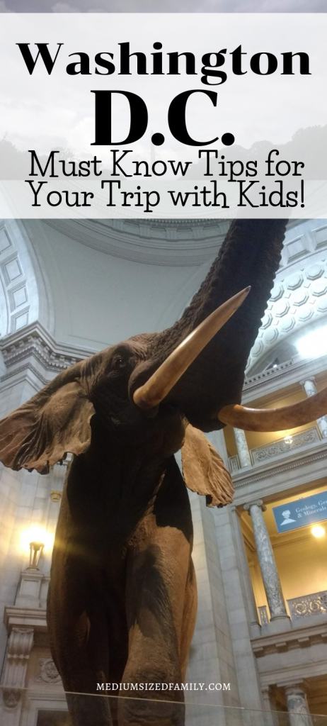 See Washington D.C. with your kids! But don't go before you read these must know tips that you probably didn't know about.