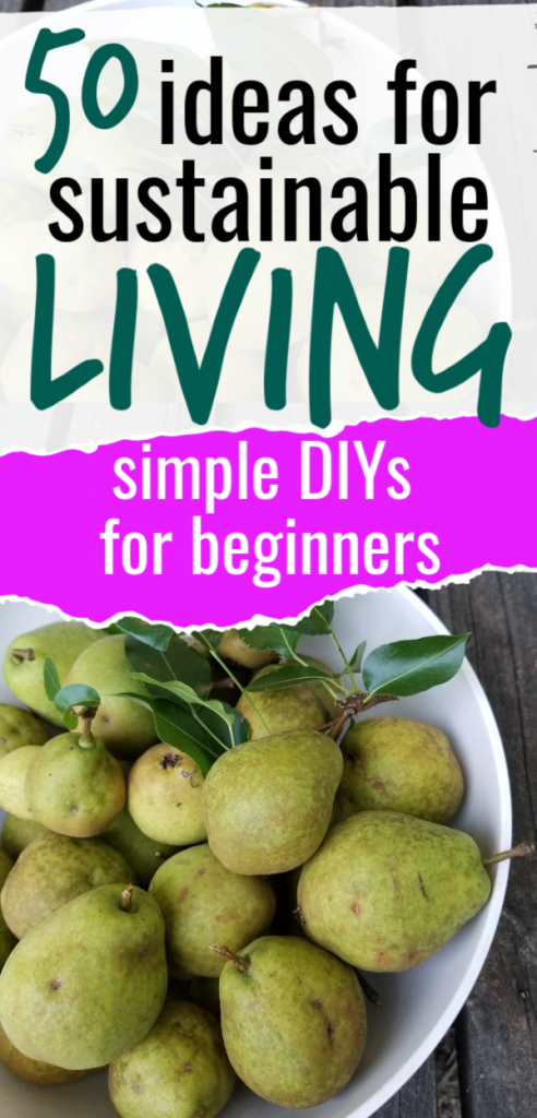 These sustainable living tips are perfect for beginners. Get DIYs you can do at home to save money and be more responsible with what you have. Use it up, wear it out, make it do, or do without.