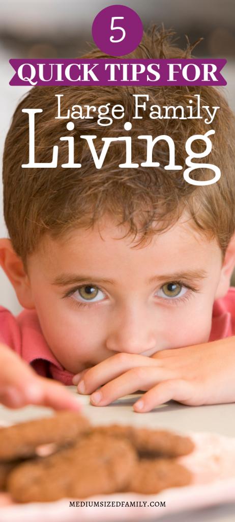 Large family living tips for raising children