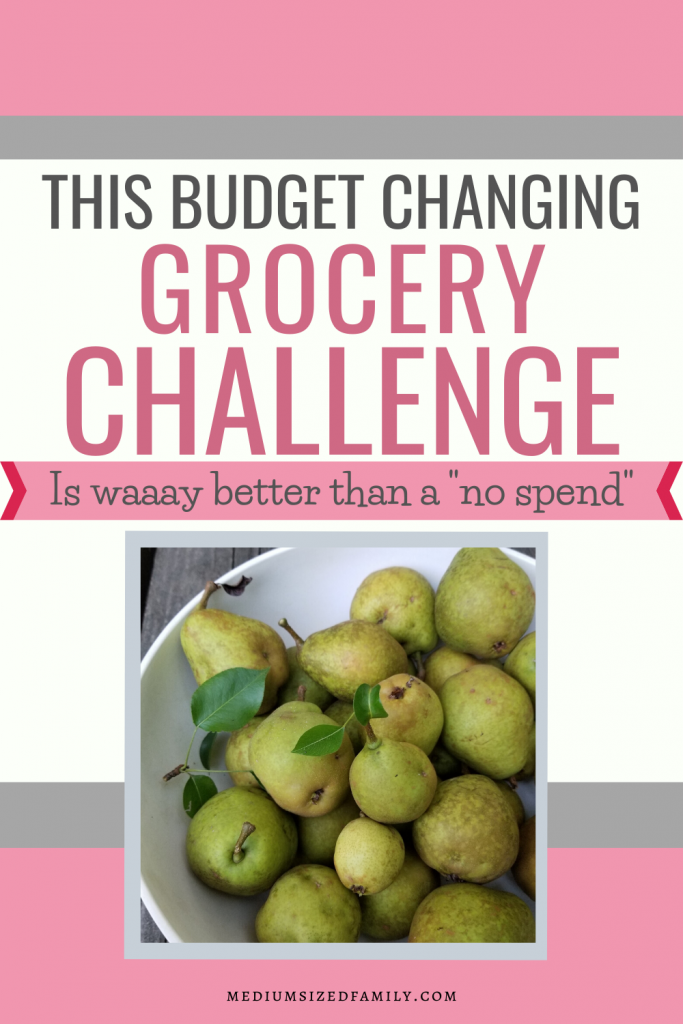 Looking for a grocery challenge that will actually lower your grocery budget? This creative way to save money will help you far more than any no spend challenge or pantry challenge out there. A fun way to save money on food.