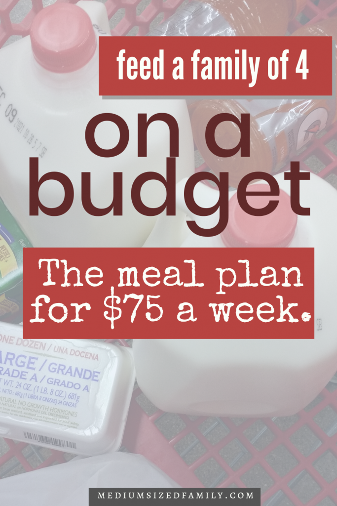 Feed a family on a budget. Feed a family of 4 for $100 a week. The $75 meal plan that feeds a family of 4 to 6 for dirt cheap.
